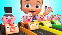 Pig Finger Family Song Little Baby Learning Nursery Rhymes Pig Cars Parking for Kids Toddlers Edu