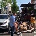 un cheval évanoui après avoir baladé des touristes pendant 8 heures révolte les internautes