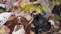 Loi anti-gaspillage : la guerre au plastique est déclarée
