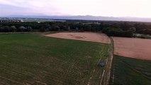 Un crop circle entre Andolsheim et Sundhoffen