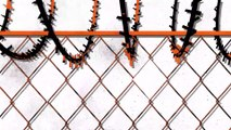 Orange is the New Black - Los momentos más memorables de Taystee