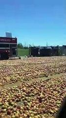 Un camion de pommes renversé