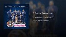 SONORA INTERNACIONAL - EL FRIO DE TU AUSENCIA - (Official Audio)