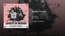 DJ KRIZIS Ft. MR. AZKOT. - SUELTA EL PERREO - (Official Audio)