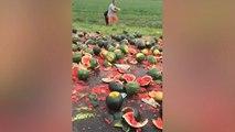 Het regent maïs en watermeloenen na vrachtwagenbotsing