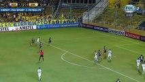 Les buts géniaux d'Everton en Copa Libertadores