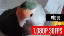 Vídeo grabado con LG Q60