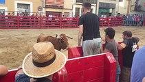 Il provoque un taureau derrière une barrière et se prend un méchant coup de corne
