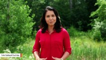 Tulsi Gabbard Slams Kamala Harris Over Biden Controversy