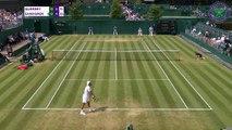 Wimbledon : Querrey rejoint Nadal en quarts