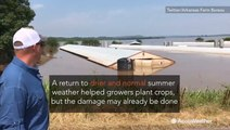 Uncertainty drags on for farmers affected by flooding