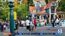 Plus d'un million de vues pour une bagarre en plein coeur du Parc Disney ce week-end (Attention images violentes)