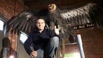 Descubren restos de un CÓNDOR GIGANTE de hace 10.000 años en Argentina