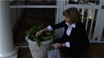 """""""Garden"""" - House Pests : How to Control """"Garden"""" Pests with Home Remedies"""