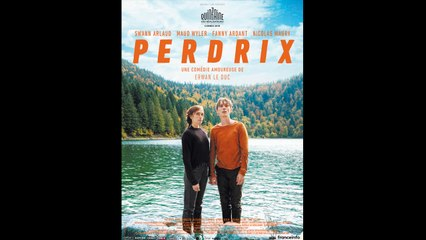 PERDRIX (2018) HD 1080p x264 - French (MD)