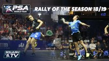 Squash: Rally of the Season 2018/19