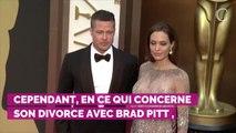 PHOTOS. Angelina Jolie : son geste très généreux envers un pet...