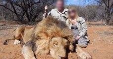 Un couple de gérants d'un magasin Super U démissionne, après la diffusion de photos de leur safari de chasse