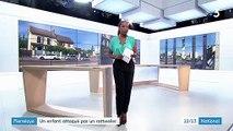 Val-d'Oise : un enfant de sept ans gravement blessé par un rottweiler