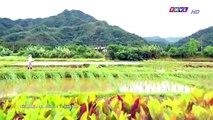 Đại Thời Đại Tập 103 - đại thời đại tập 104 - Phim Đài Loan - THVL1 Lồng Tiếng - Phim Dai Thoi Dai Tap 103
