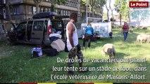 La transhumance du Grand Paris