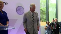 Prince Charles tests a flight simulator