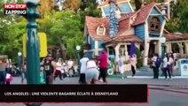 Los Angeles : Une violente bagarre éclate au sein d'une famille à Disneyland (Vidéo)