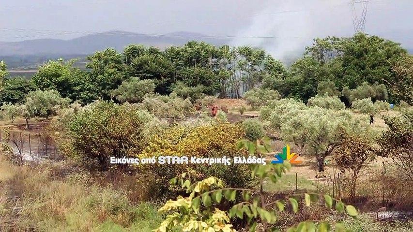 Υπό μερικό έλεγχο η φωτιά στο Λαφύστι Λιβαδειάς