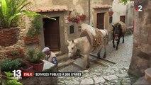 Italie : des mulets en charge du service public