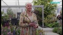 Judi Dench combat une maladie dégénérative : « je ne peux plus lire »