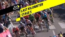 Last kilometer / Flamme rouge - Étape 5 / Stage 5 - Tour de France 2019
