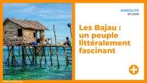 Les Bajau : un peuple littéralement fascinant