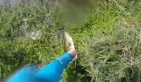 Un pêcheur a une très mauvaise surprise en allant chercher un poisson !