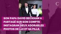 PHOTOS. Harper Beckham : ses parents et ses frères lui adresse...