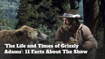 'The Life and Times of Grizzly Adams': 11 Facts About The Iconic Show