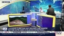 """""""Le risque climatique doit rentrer d'une manière ou d'une autre dans le bilan des entreprises"""", Bertrand Badré - 11/07"""