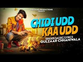 GULZAAR CHHANIWALA - CHIDI UDD KAA UDD  | New Punjabi Songs 2018 | Latest Punjabi Songs 2018