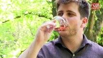 Rosé d'été : Coup de cœur pour un vin de Provence au nez pâtissier