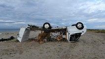 Désolation après la tornade meurtrière dans le nord de la Grèce