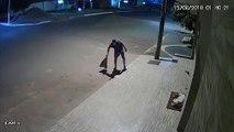 Un passant couvre un chien qui dort dans la rue... Beau geste