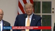 Trump Announces New Steps on Citizenship Count