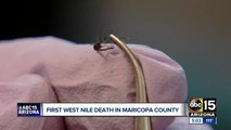 Maricopa County records its first West Nile death of 2019