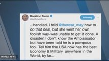 Trump's Provocative Tweets on UK Ambassador