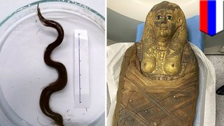 Ancient Egyptian curls perfectly preserved after 3,000 years