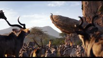 The Lion King Movie Clip - Circle of Life