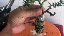 의왕출장안마 -후불100%ョØ7ØE7575E0069{카톡CC6969} 의왕전지역출장안마 의왕오피걸 의왕출장마사지 의왕안마 의왕출장마사지 의왕콜걸샵キギク