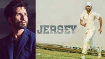Shahid Kapoor Jersey Remake: Here is a big update about this Karan Johar's project | FilmiBeat