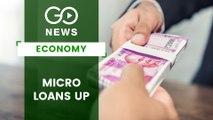 Growth In Micro Finance Loans
