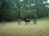 cour d'équitation ( obstacle )