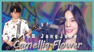 [Special Stage] 015B, JangJane - Camellia Flower,  015B, 장재인 - 동백꽃 show Music core 20190713